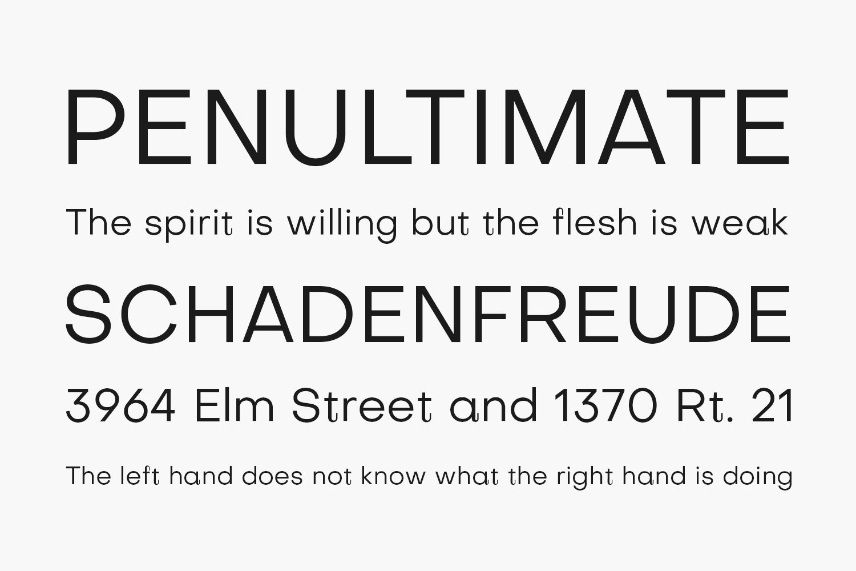 Subjectivity Free Font Family
