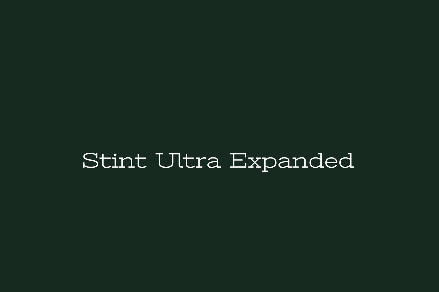 Stint Ultra Expanded