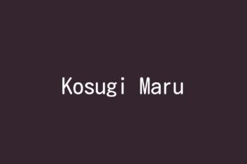 Kosugi Maru