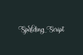 Spalding Script