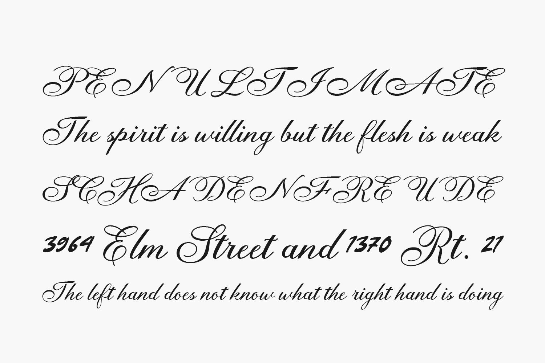 Anatomia Free Font