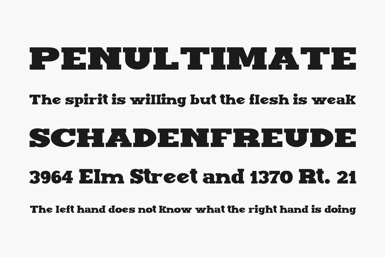 Maxxi Serif Free Font