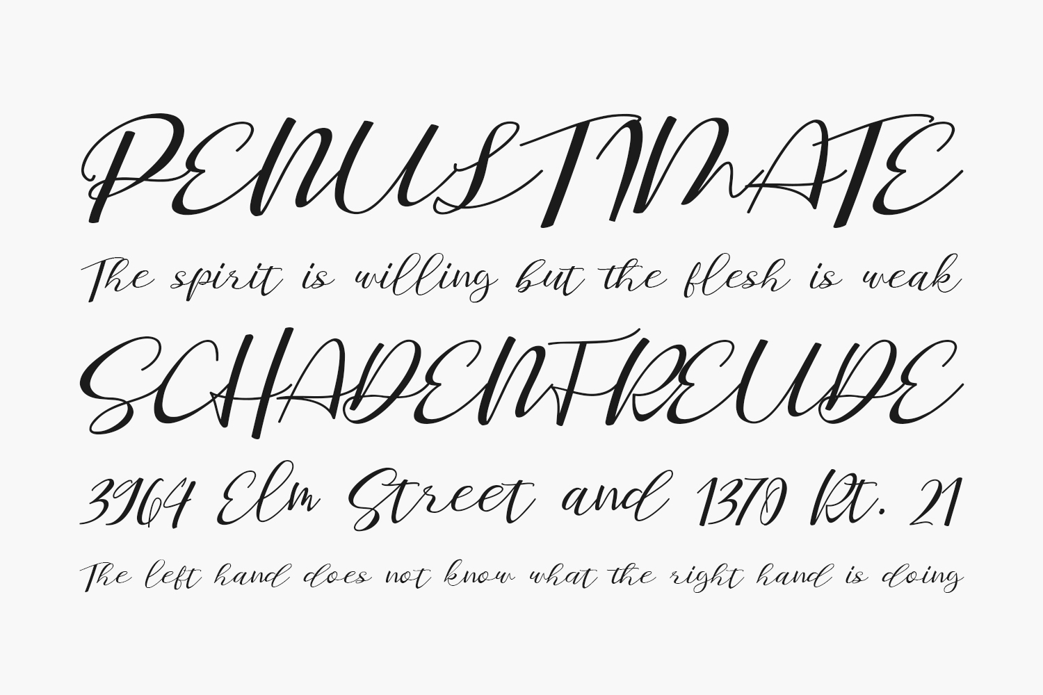 Staples Calligraphy Free Font
