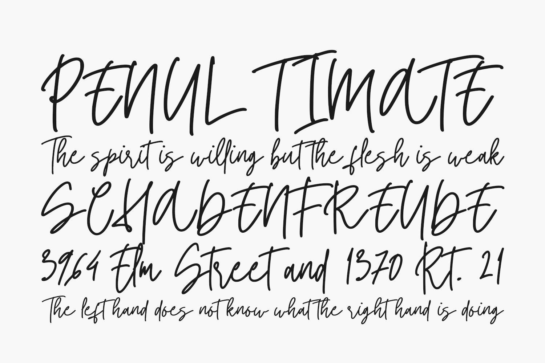 Twister Free Font