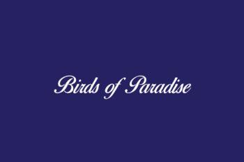 Birds of Paradise Free Font