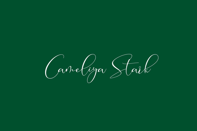 Cameliya Stark Free Font