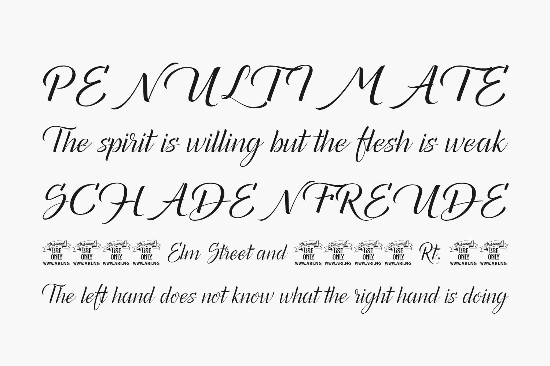 Canela Bark Free Font