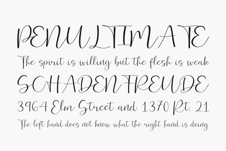 Ferinitta Free Font