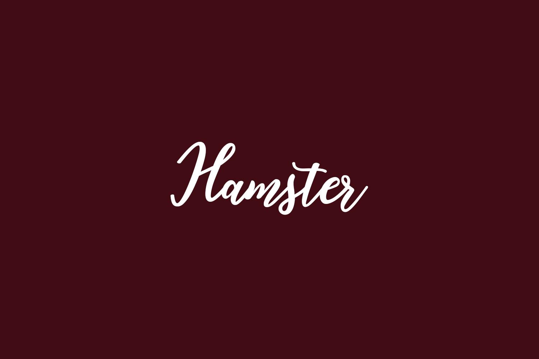 Hamster Free Font
