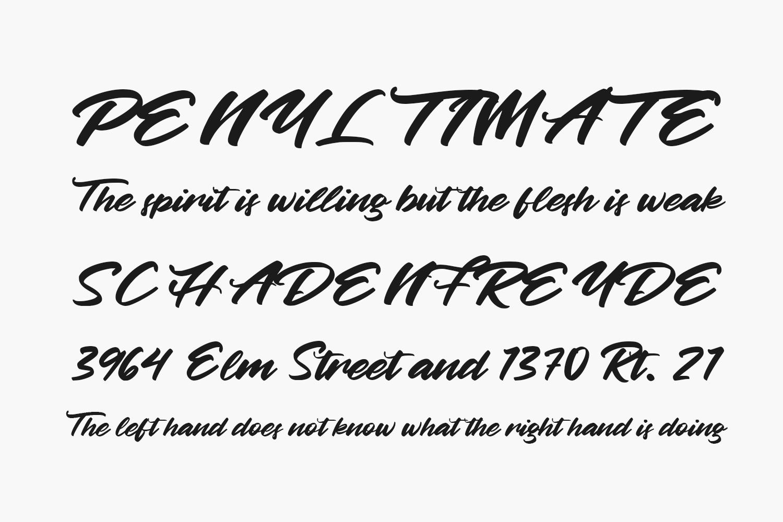 Betty Finty Free Font