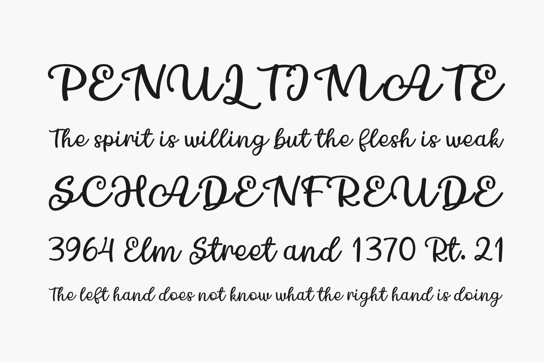 Chamomile Free Font