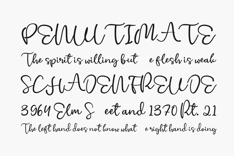 Cherry Blossom Free Font
