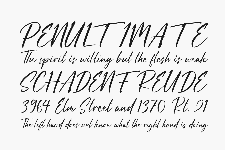 Dandelion Fall Free Font