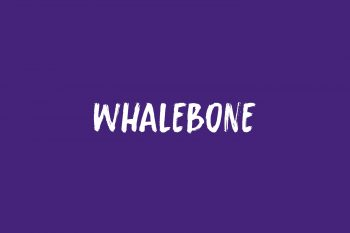 Whalebone Free Font