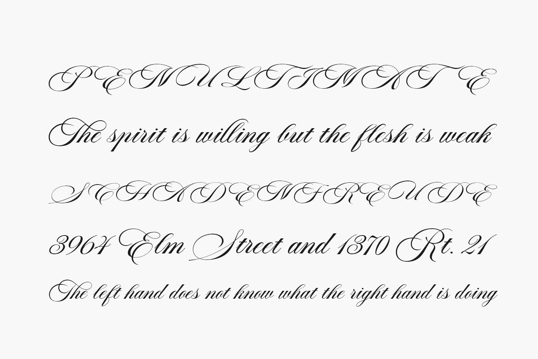 Aston Script Pro Free Font