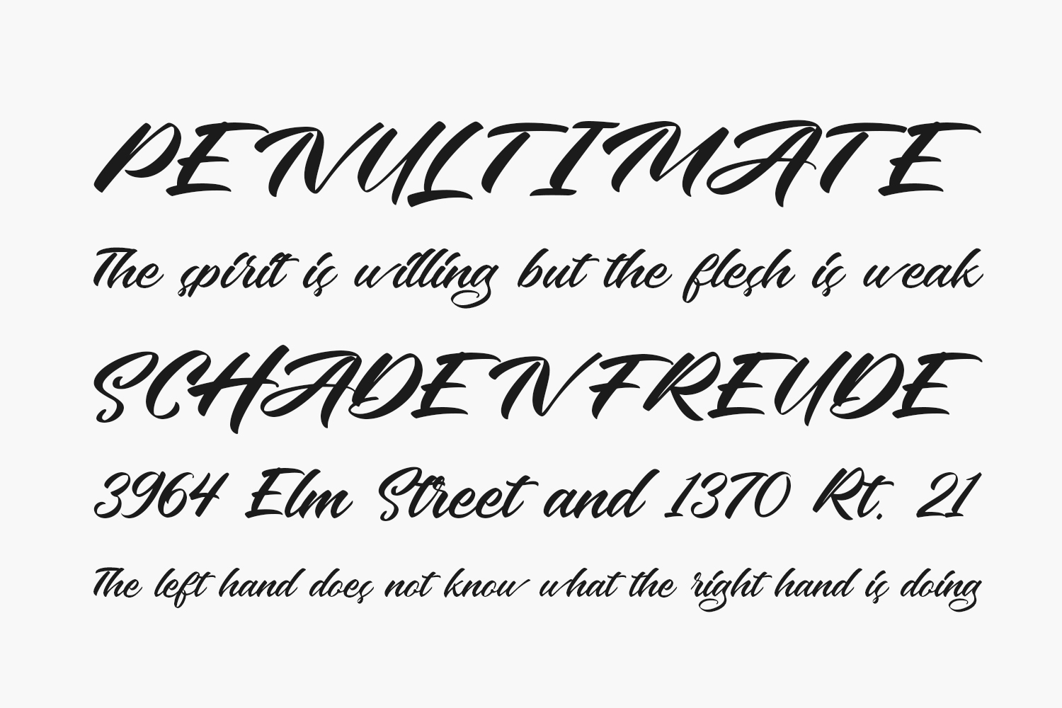 The Speciment Free Font
