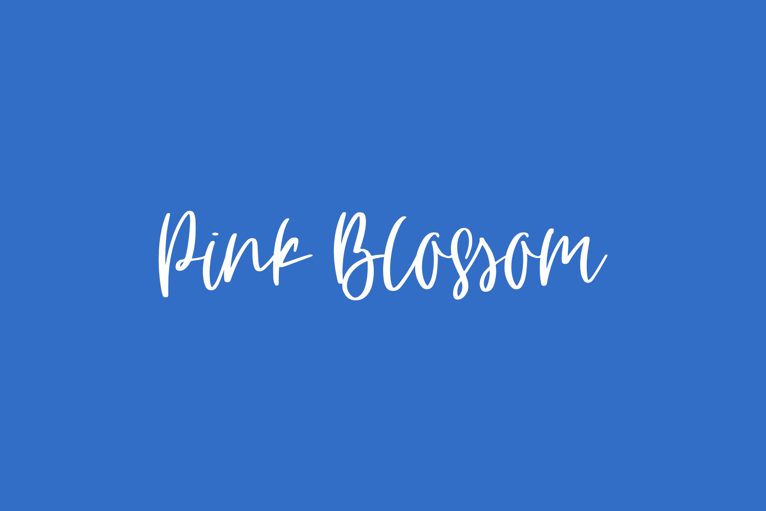 Pink Blossom Free Font