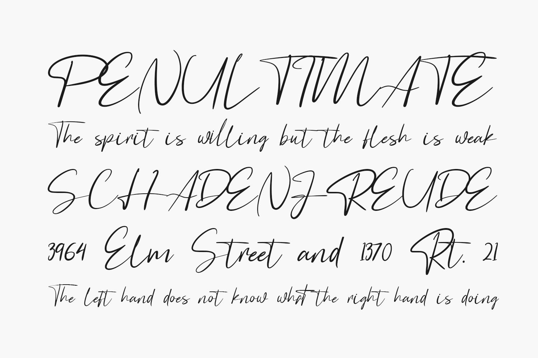 Astagina Signature Free Font