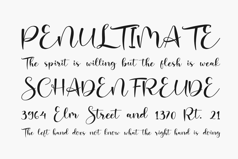 Charlotte Free Font