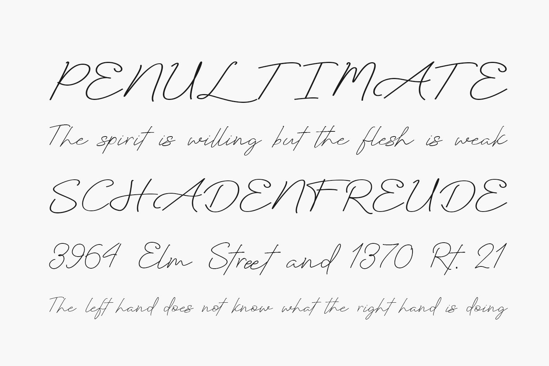 Sallytta Free Font