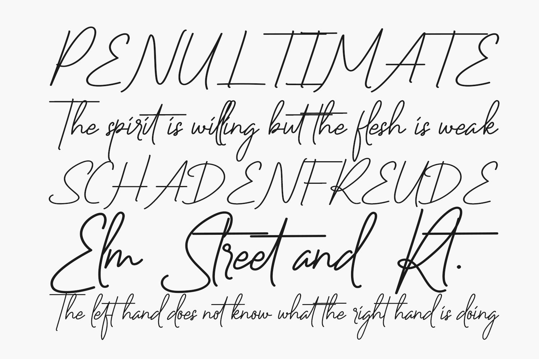 Vineland Free Font