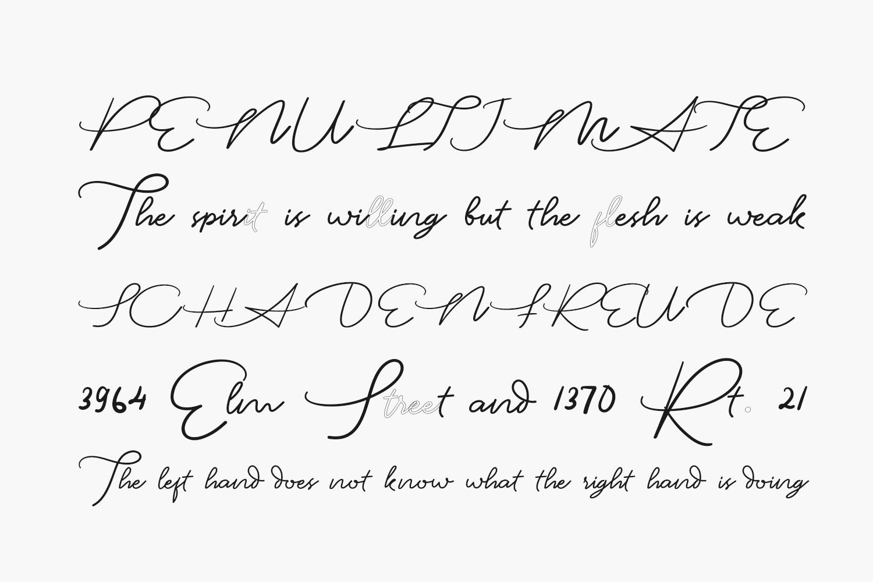 Louis Robert Free Font