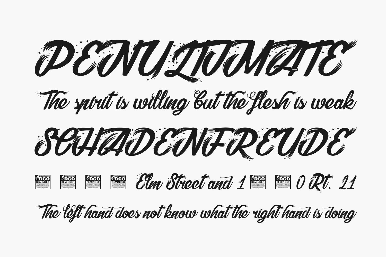 Shelter Free Font