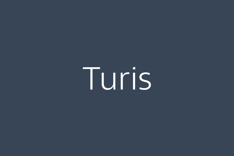 Turis Free Font