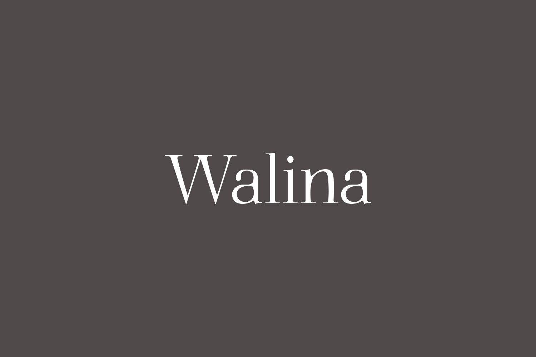 Walina Free Font