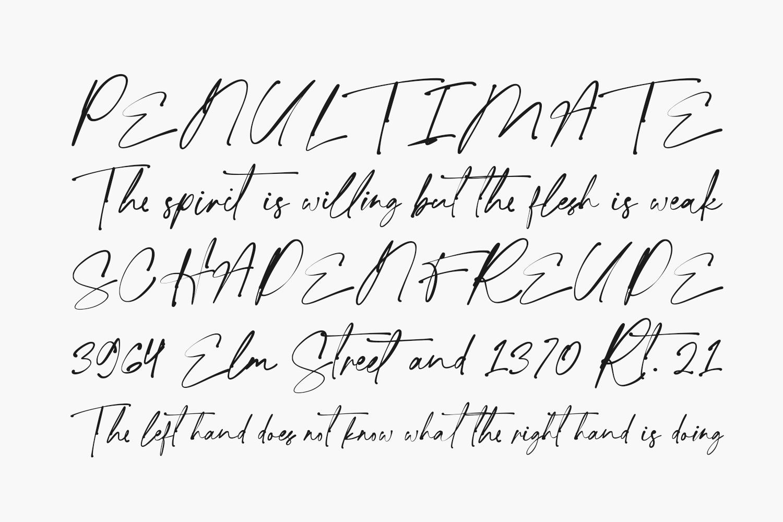 Ligatures Script Free Font