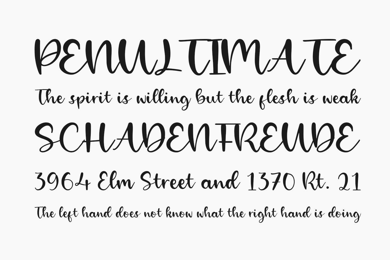 Alpinet Free Font