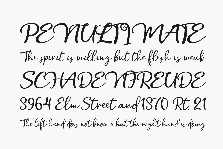 Hollymoon Script Free Font