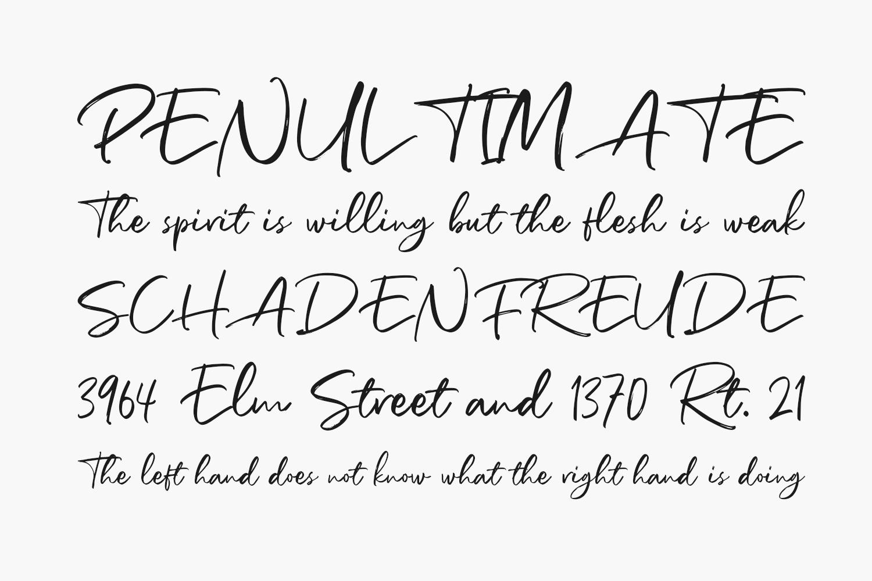 Richardson Script Free Font
