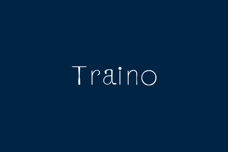 Traino Free Font